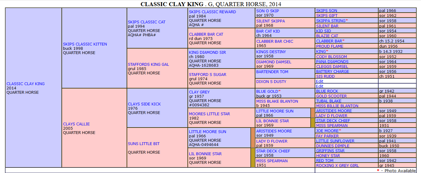Classic Clay King extended pedigree.png