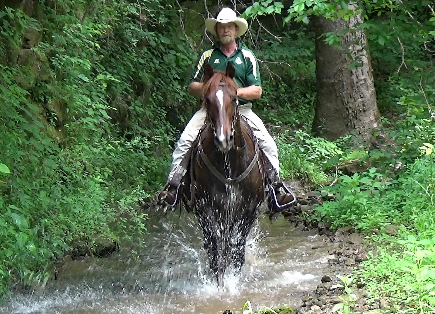 Hidalgo on trails.Movie_SnapshotA.jpg