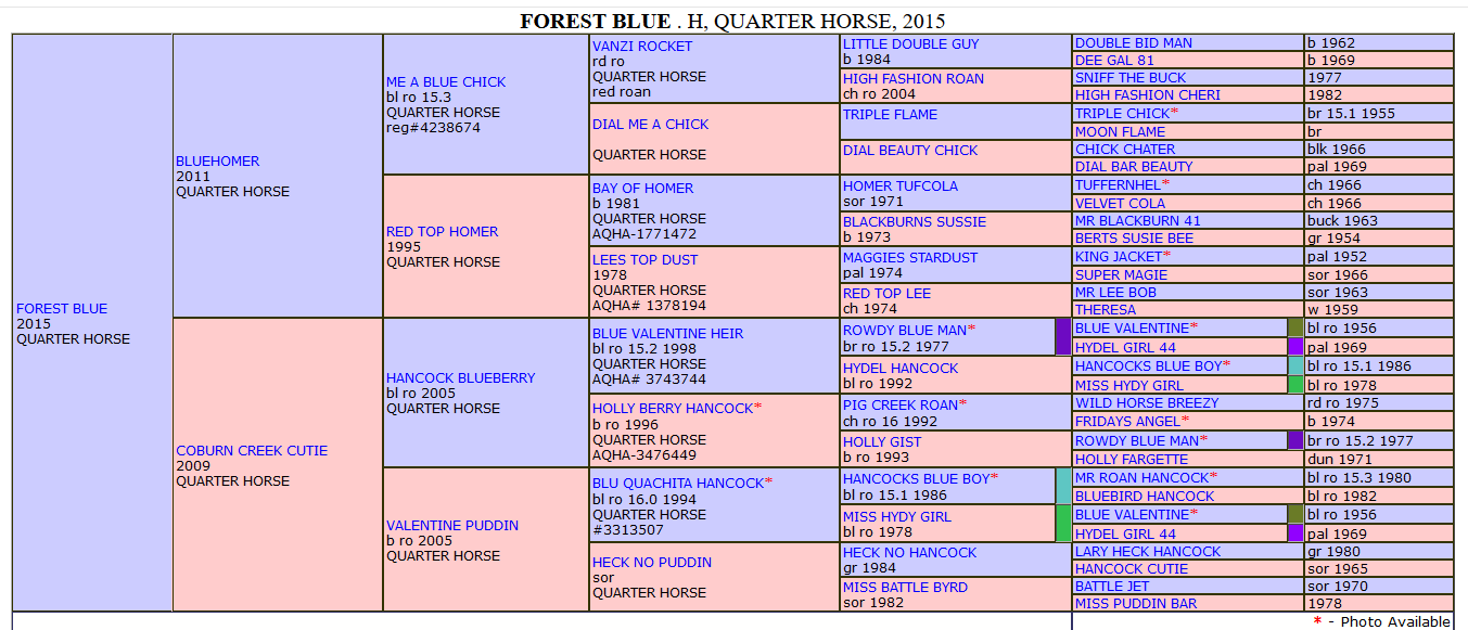 Screenshot_2019-07-31 Forest Blue Quarter Horse.png