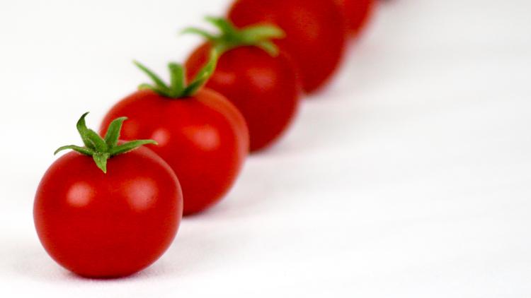 Header-Medium---Tomato.jpg