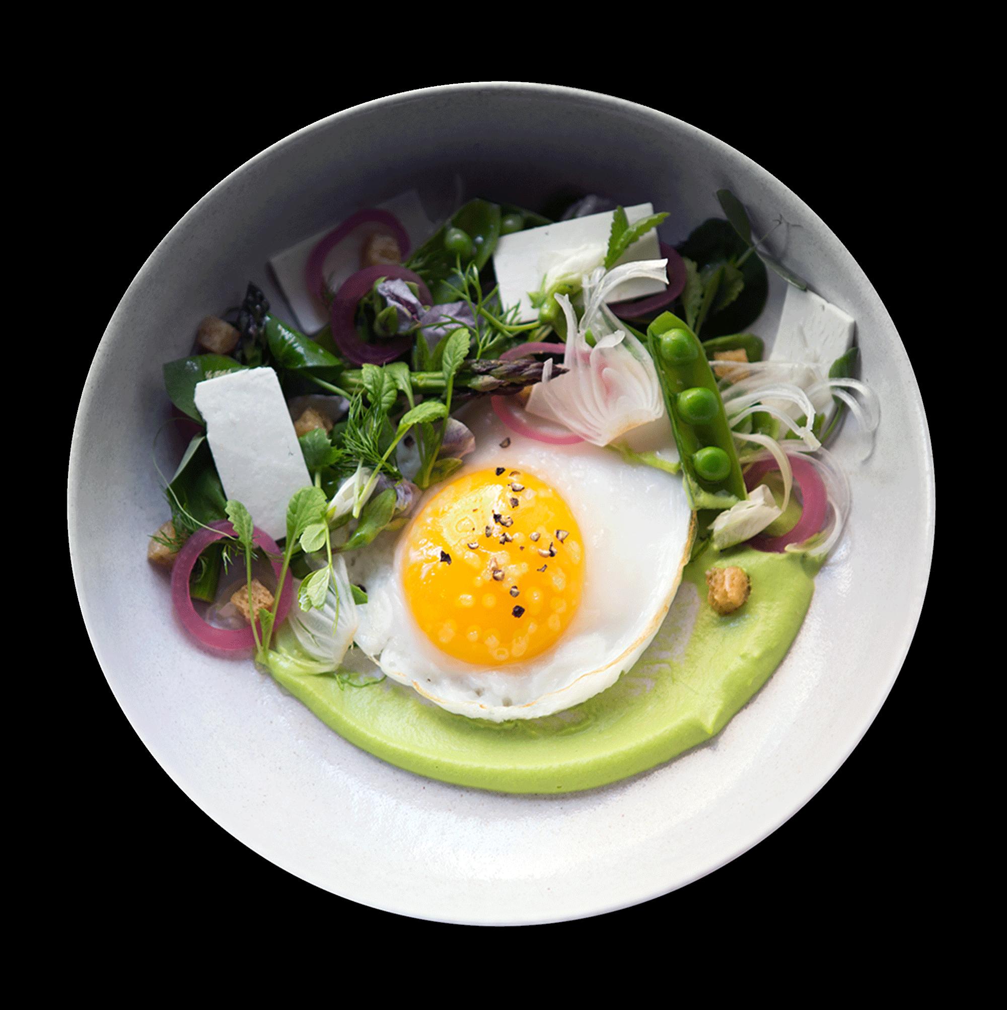 egg_plate_light.png
