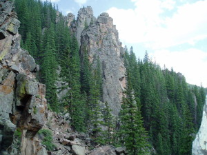 Forest Mountain 9.jpg