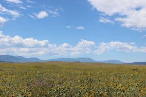 Huerfano Valley Ranch 4.jpg