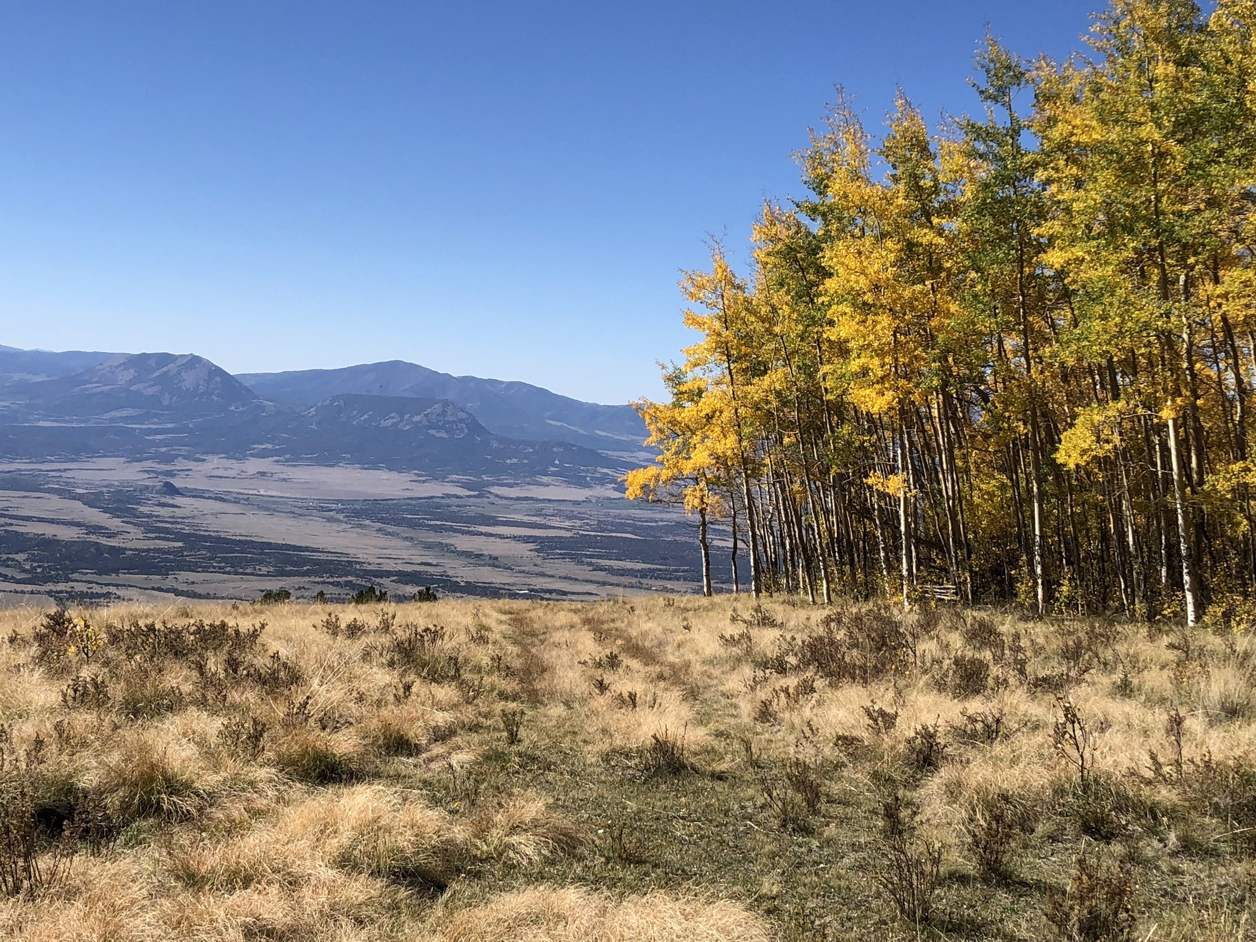 Farista, CO 81040   $475,000   San Isabel In-holding   160 acres · mountains · Forest · live water · wildlife