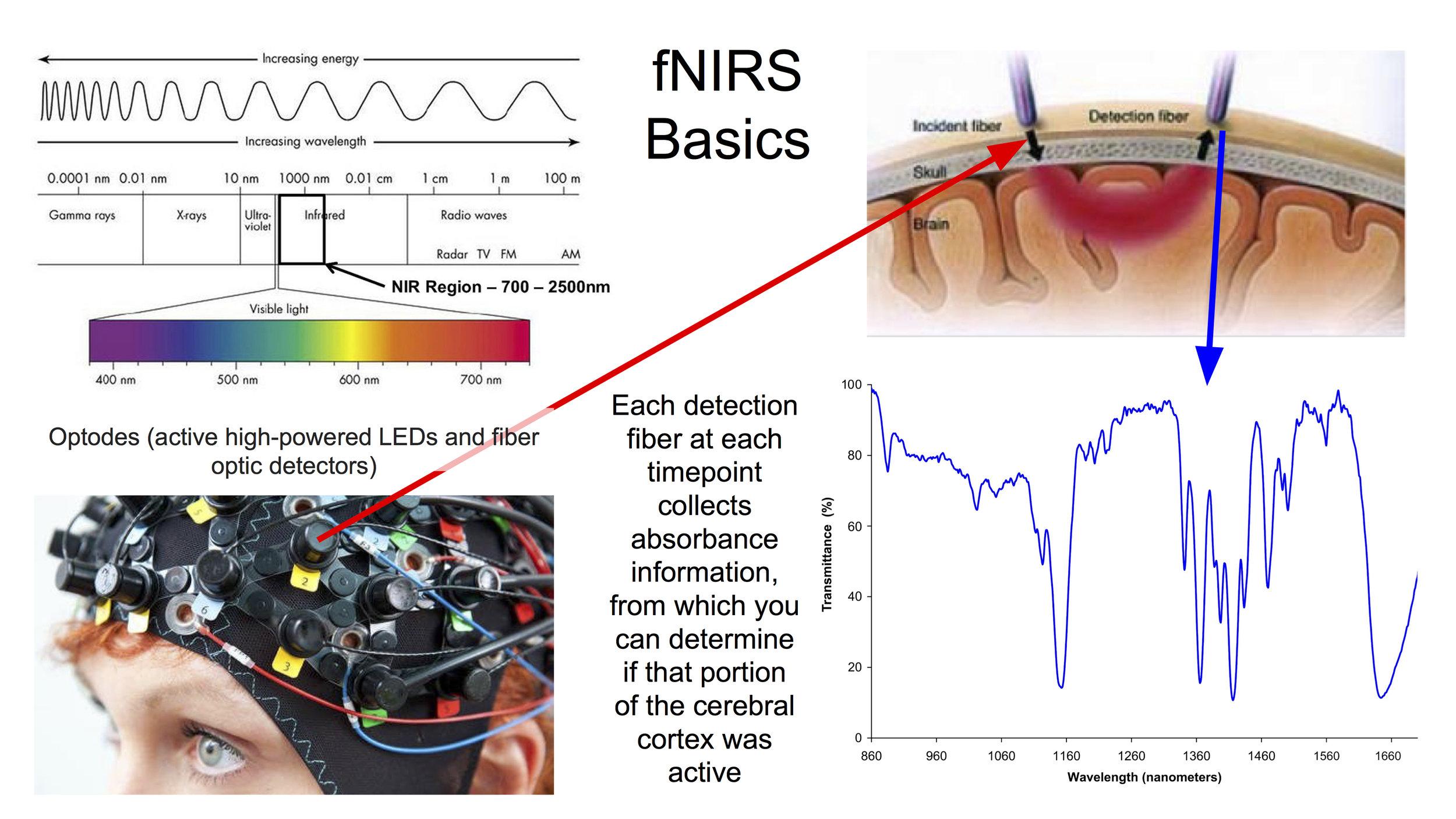 Functional NeuroImaging Techniques (fNIRS 2).jpg