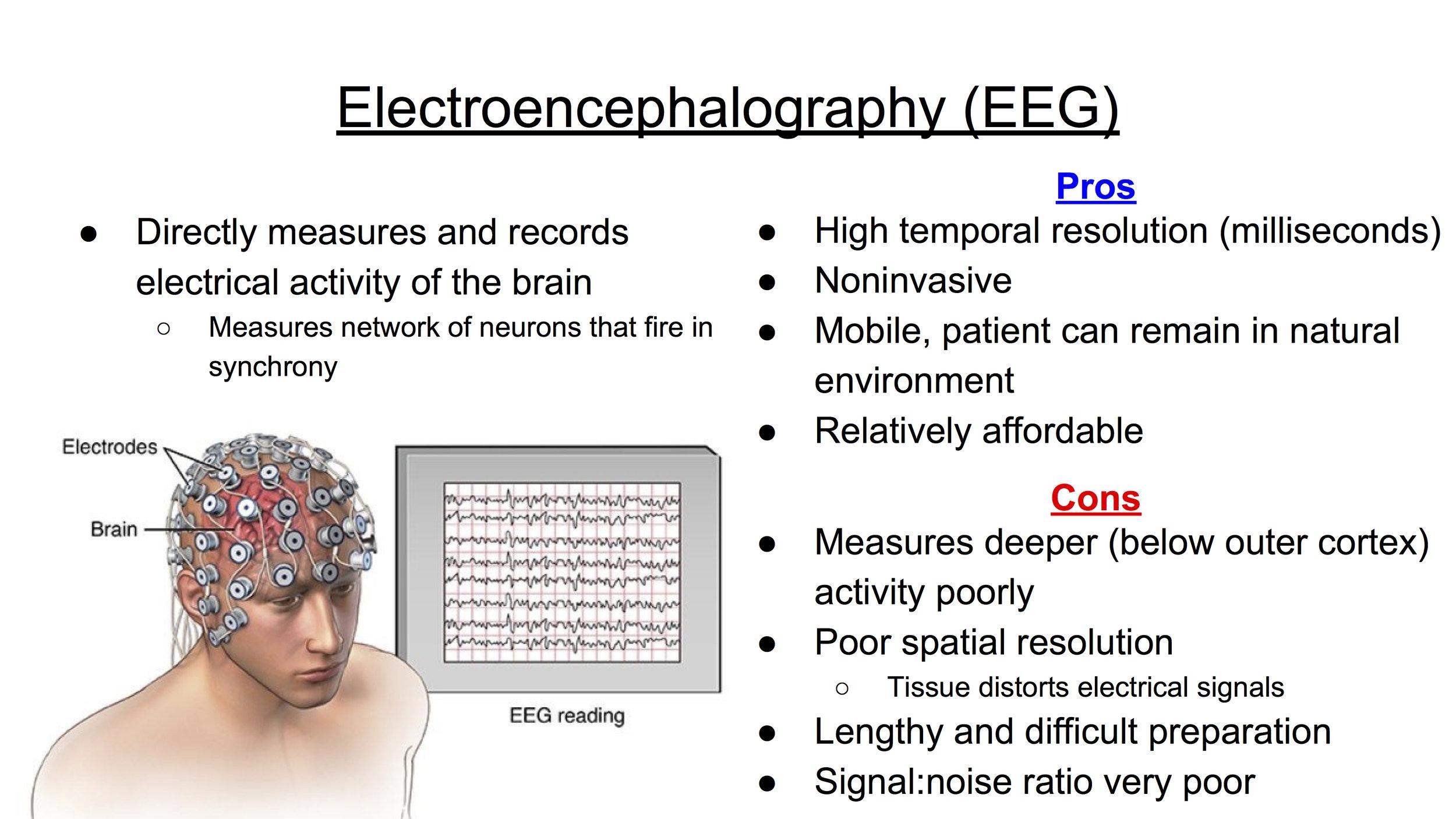 Functional NeuroImaging Techniques (EEG).jpg