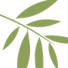 BlackWillowLeaf-green small.png