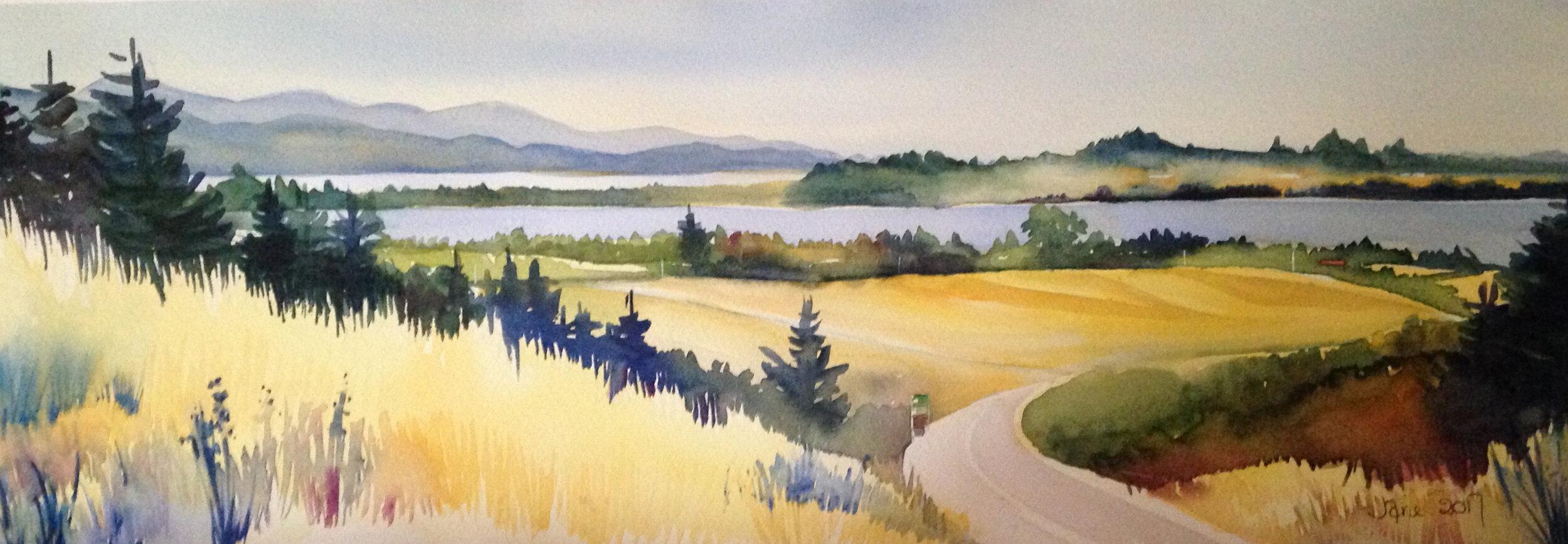 Watercolour Artist Nelson