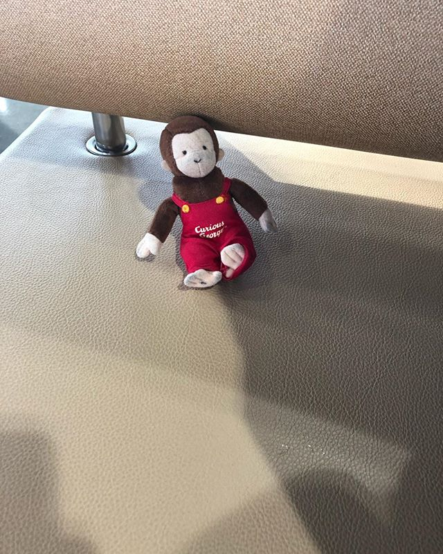 Curious George goes to Canada!
