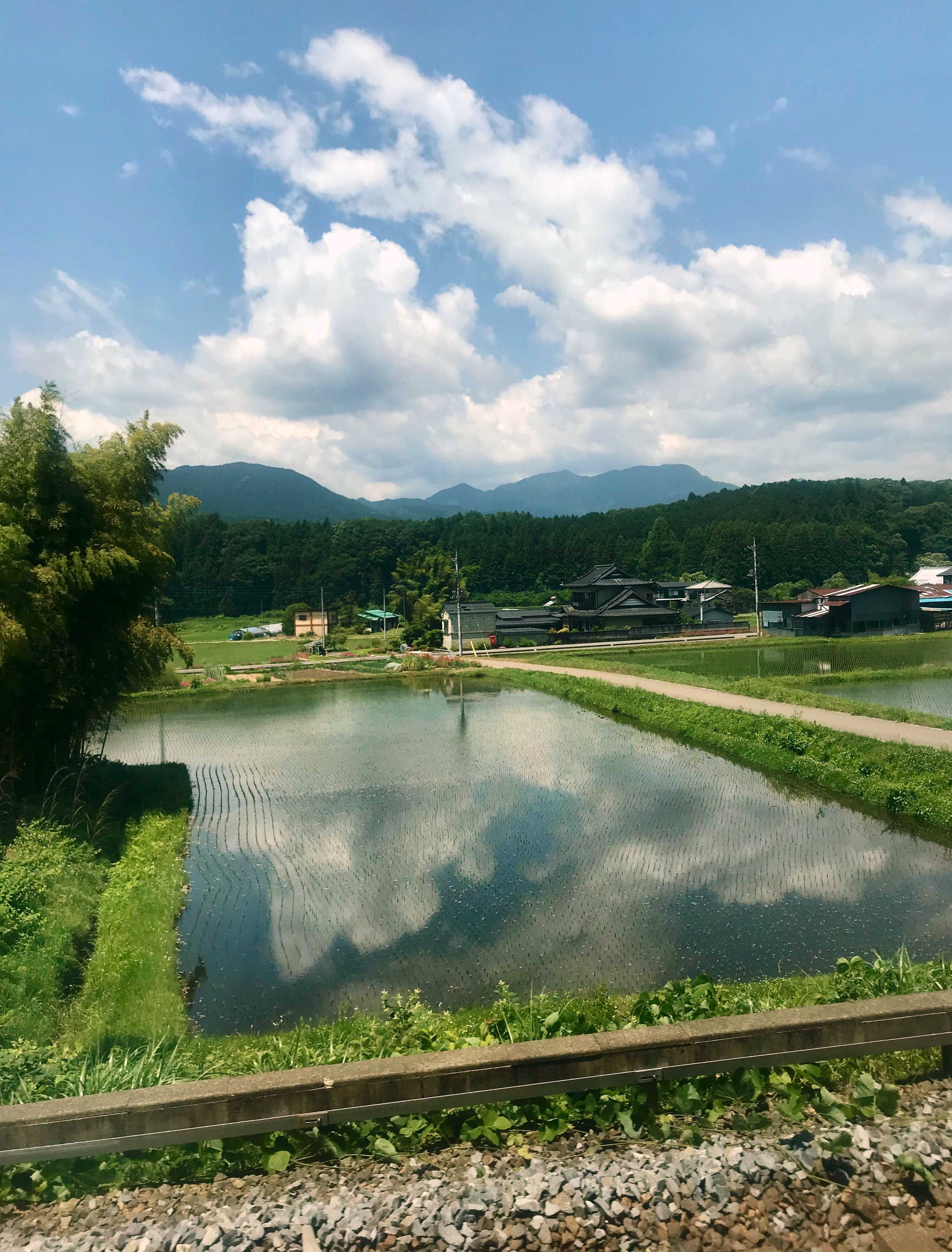 The picturesque view outside my train window in transit from Tokyo to Kanuma, Japan in June 2018.