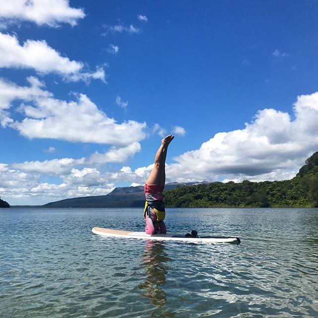 This awesome customer said she might fall in and was unsure if she could paddle board well! By the end of our tour this happened!! Come give it a try for yourself .. . . . . . #paddleboarding #paddleboardrotorua #rotoruanz #sup #yoga
