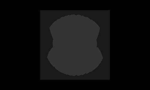 acj excursions mini logo.png