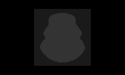 hotels mini logo.png