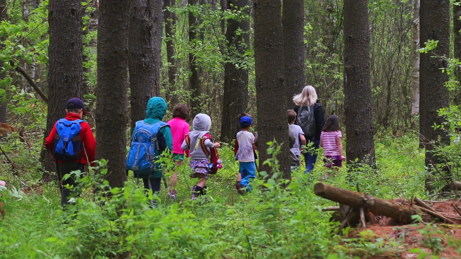 negotiating-with-nature-teacher-with-children-in-woods.png