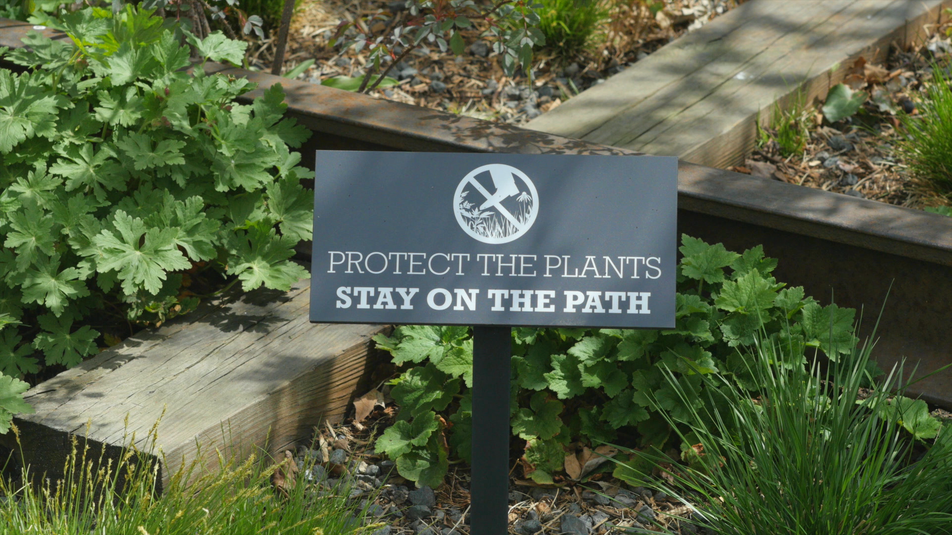 negotiating-with-nature-the-high-line-protect-the-plants-sign.png