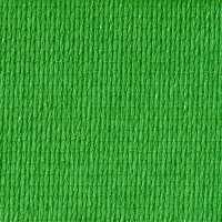 2018_Commercial_95_340_Bright_Green_200_200_50_s_c1.jpg