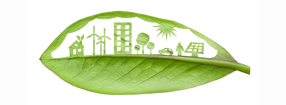 sustentabilidade_cruzeiro.jpg