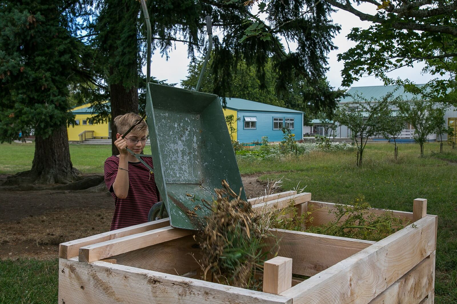 Luca Bollinger SES food forest at South End School
