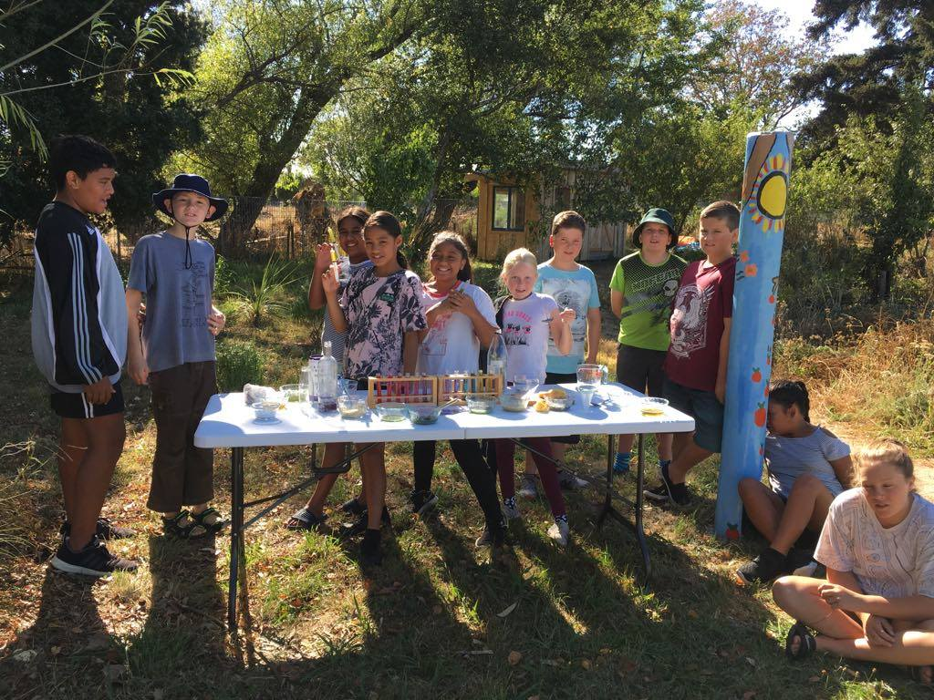 Wairarapa Science and Sustainability Project