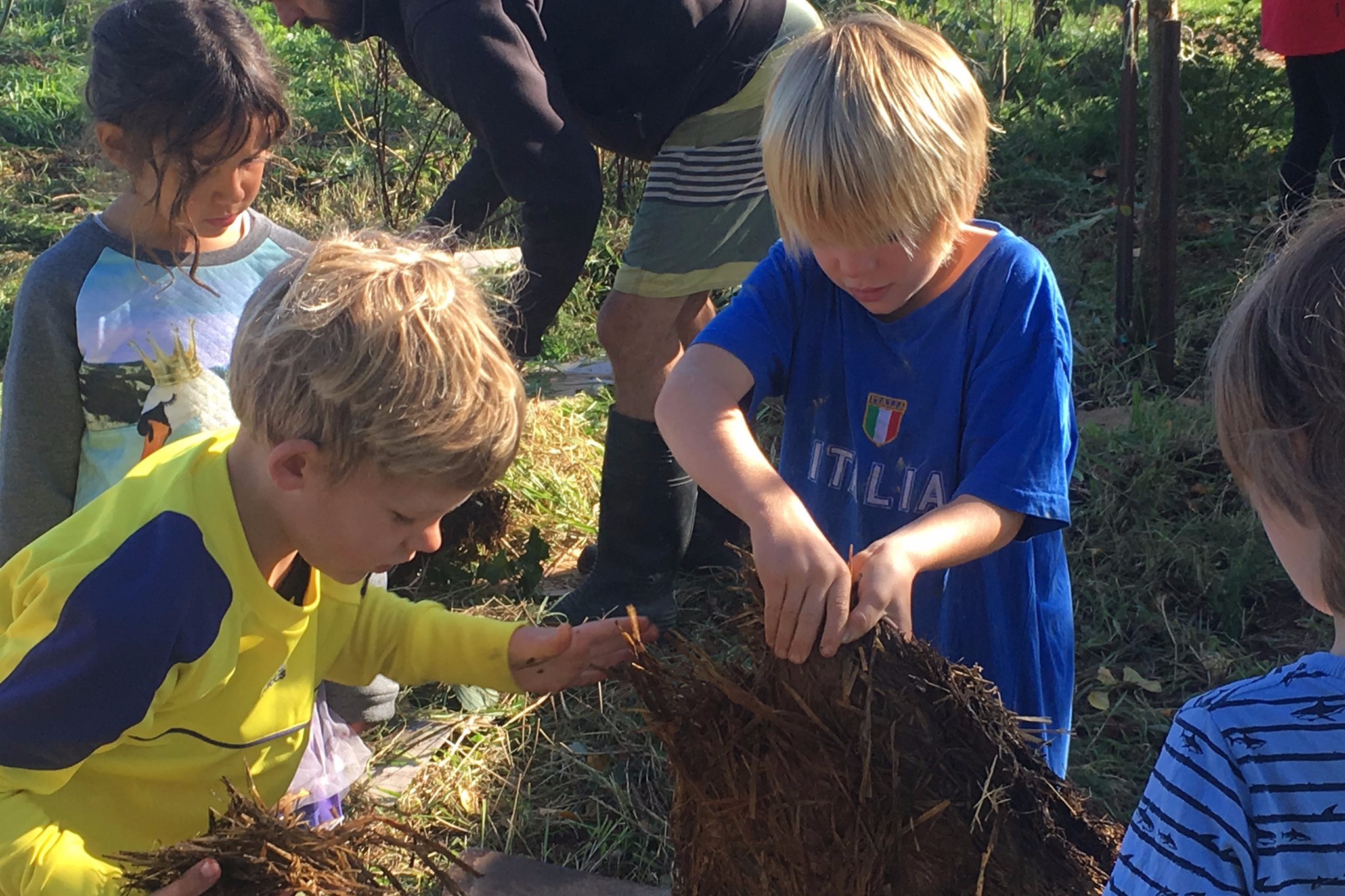 Gift a fruit tree to a Wairarapa school - A donation of $30 will allow us to plant a fruit tree in a wairarapa school of your choice
