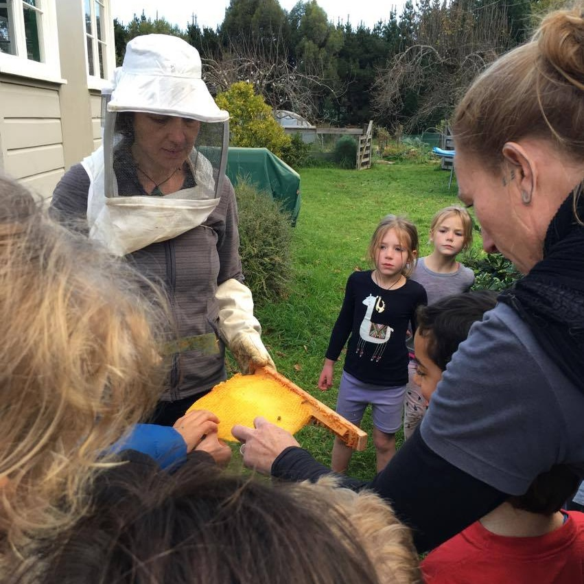- We are very lucky at South End School to have two bee project pollinator mentors (Jason Markham and Lucia Zanmonti) that give up their time to teach the student beekeepers how to build a hive, attract a swarm of bees and how to check on the hive and take care of the bee colony.