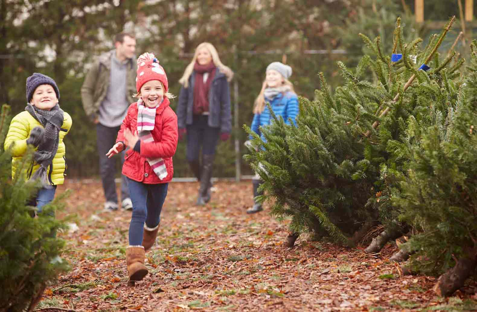 7-Holiday-Traditions-to-Start-With-Your-Family.jpg