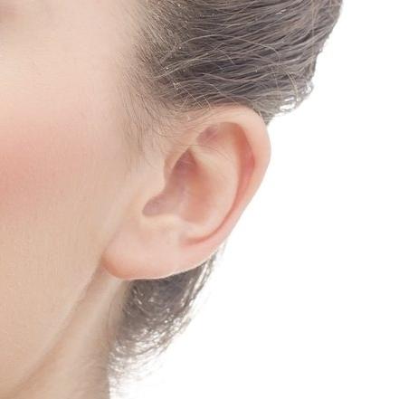 Ears -