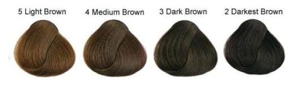 ELEGANT hair colours