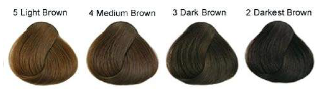 SOPHISTICATED hair colours