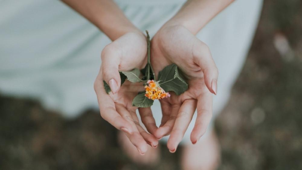 Artedite Healing Amsterdam