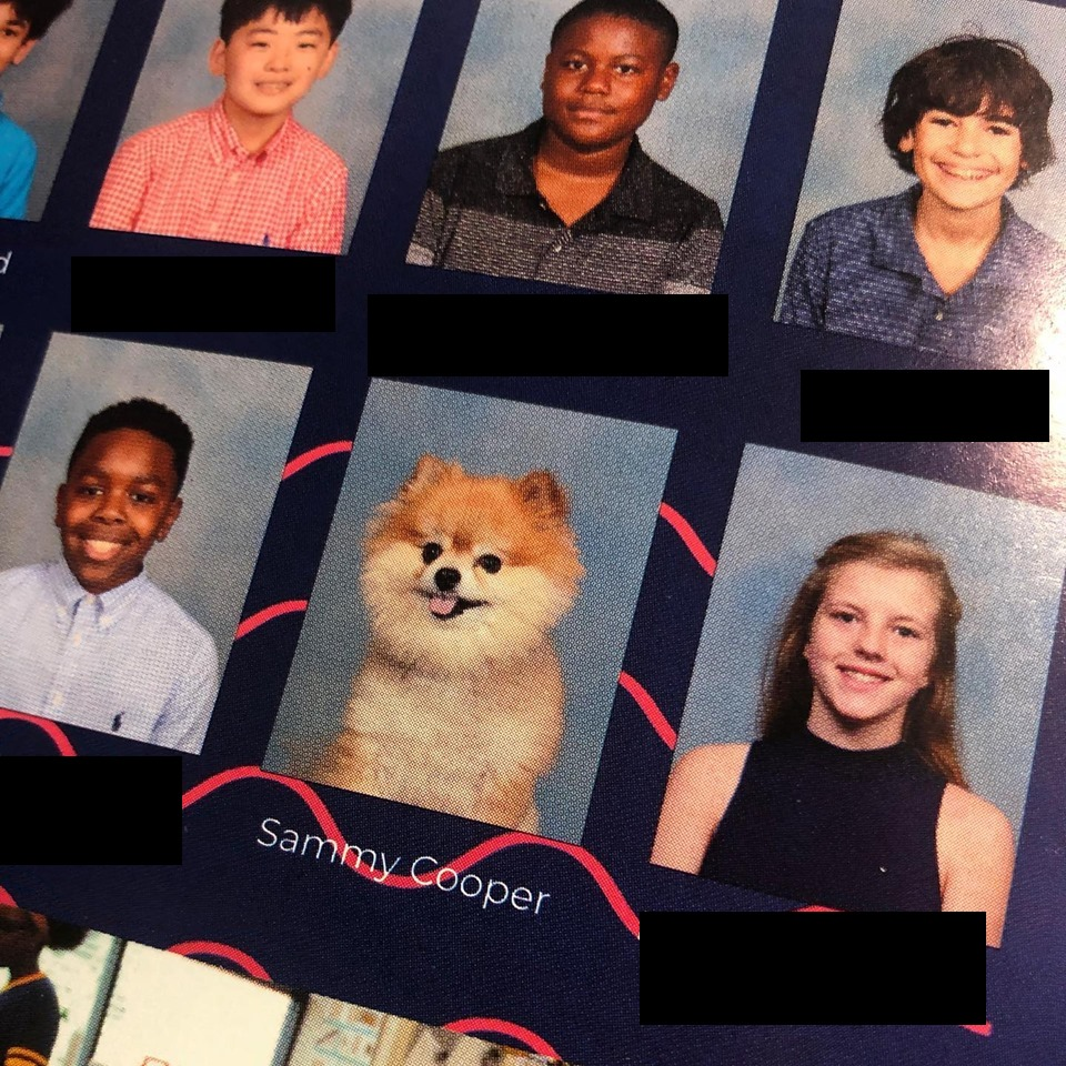 Sammy in the Lausanne Yearbook!