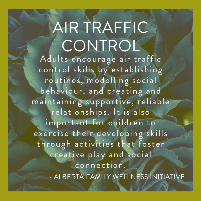 Alberta Family Wellness Initiative and Brain Building, Air Traffic Control