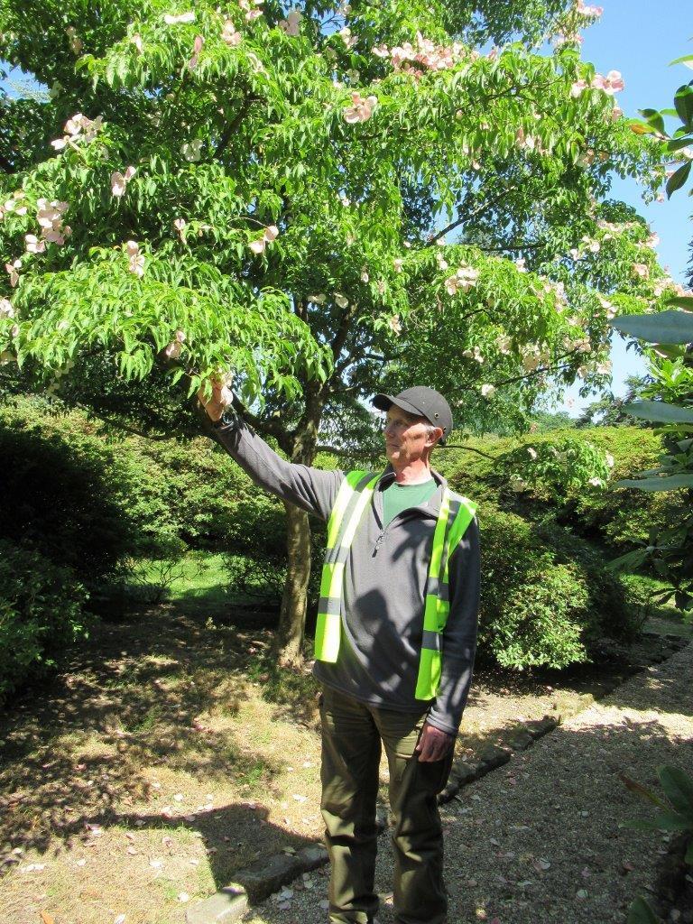 1 head gardener Ray Abraham PRINT.jpg