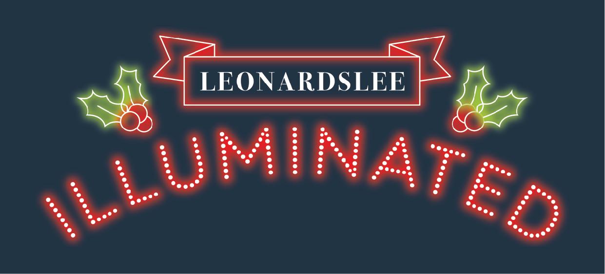 Leonardslee Light Festival.jpg
