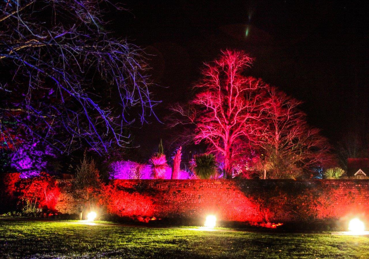 Illuminated December Sussex.jpg