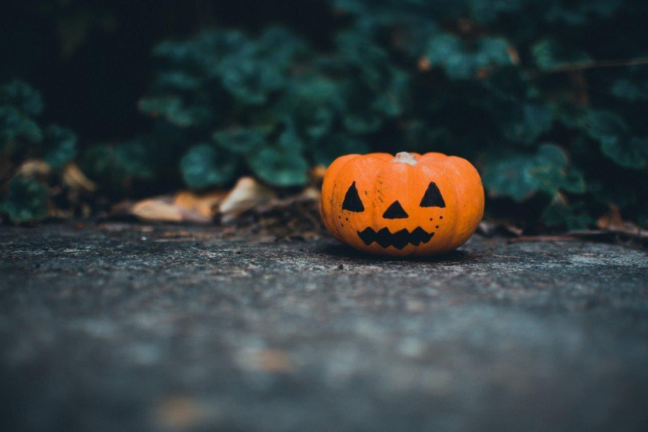 Halloween fun Leonardslee Horsham.jpg