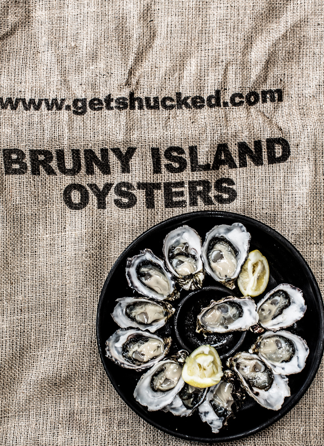 DAY 2 OYSTERS-1