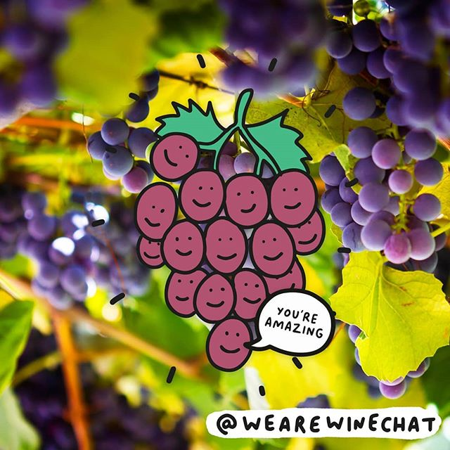 Grape friends make the best friends! 🍇 . #wearewinechat wine available in @sainsburys and @morrisons now! . . #winechat #wearewinechat #grapes #wine #winelovers #veronicadearly #illustration #winetime #bankholiday