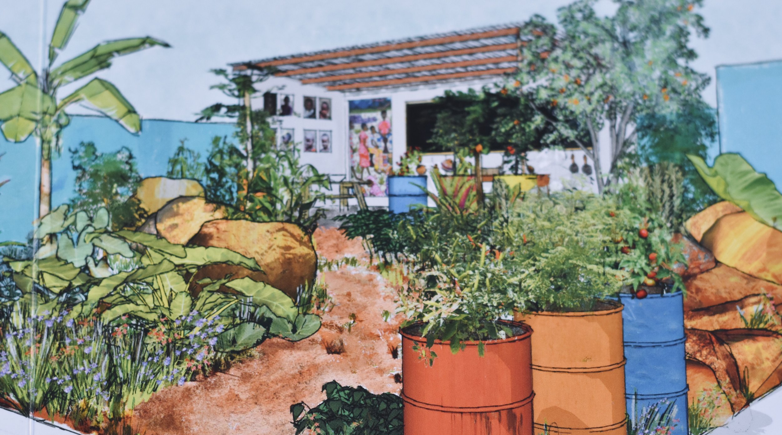 An Artist's impression of the CAMFED garden showing the classroom at the back.
