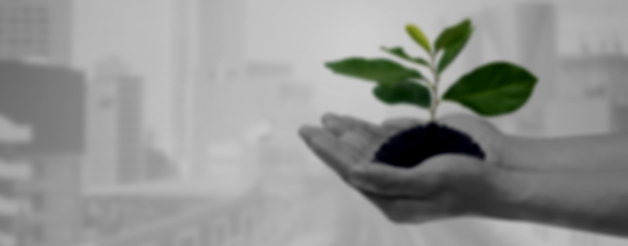5. Modello di sostenibilità -