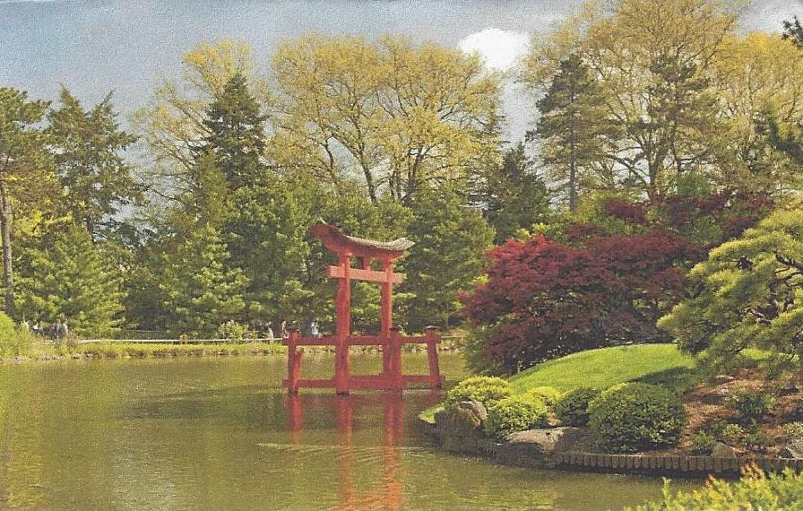 9 Japanese Garden BBG.jpg