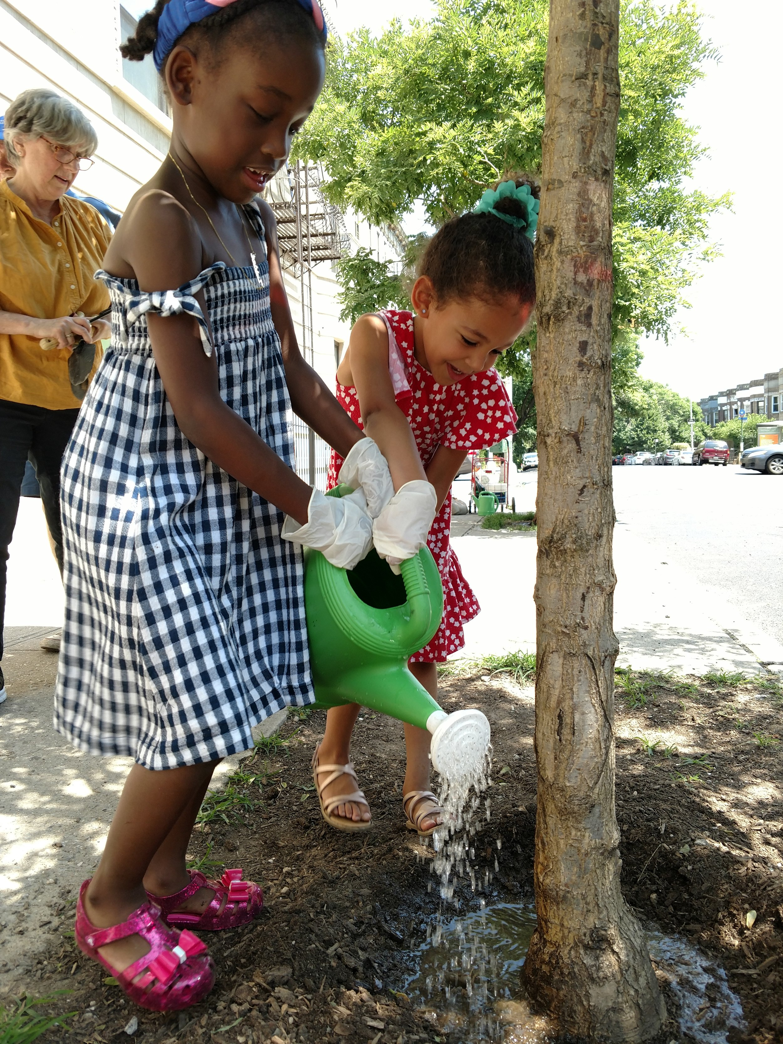 6 Children watering tree.jpg