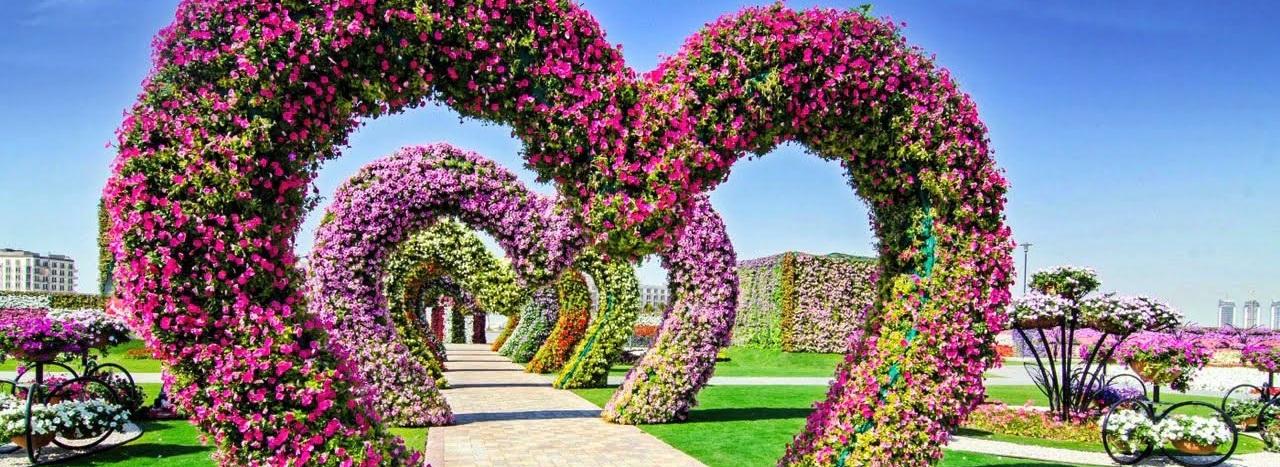 flowers-heartshaped-dubai.jpg
