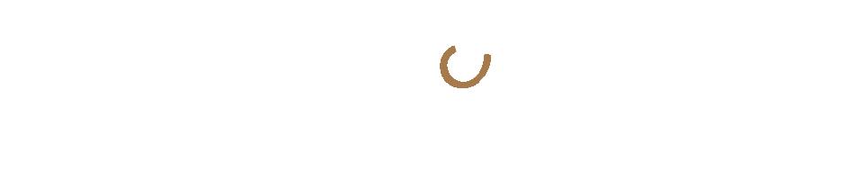 ST-logo-white-02.png