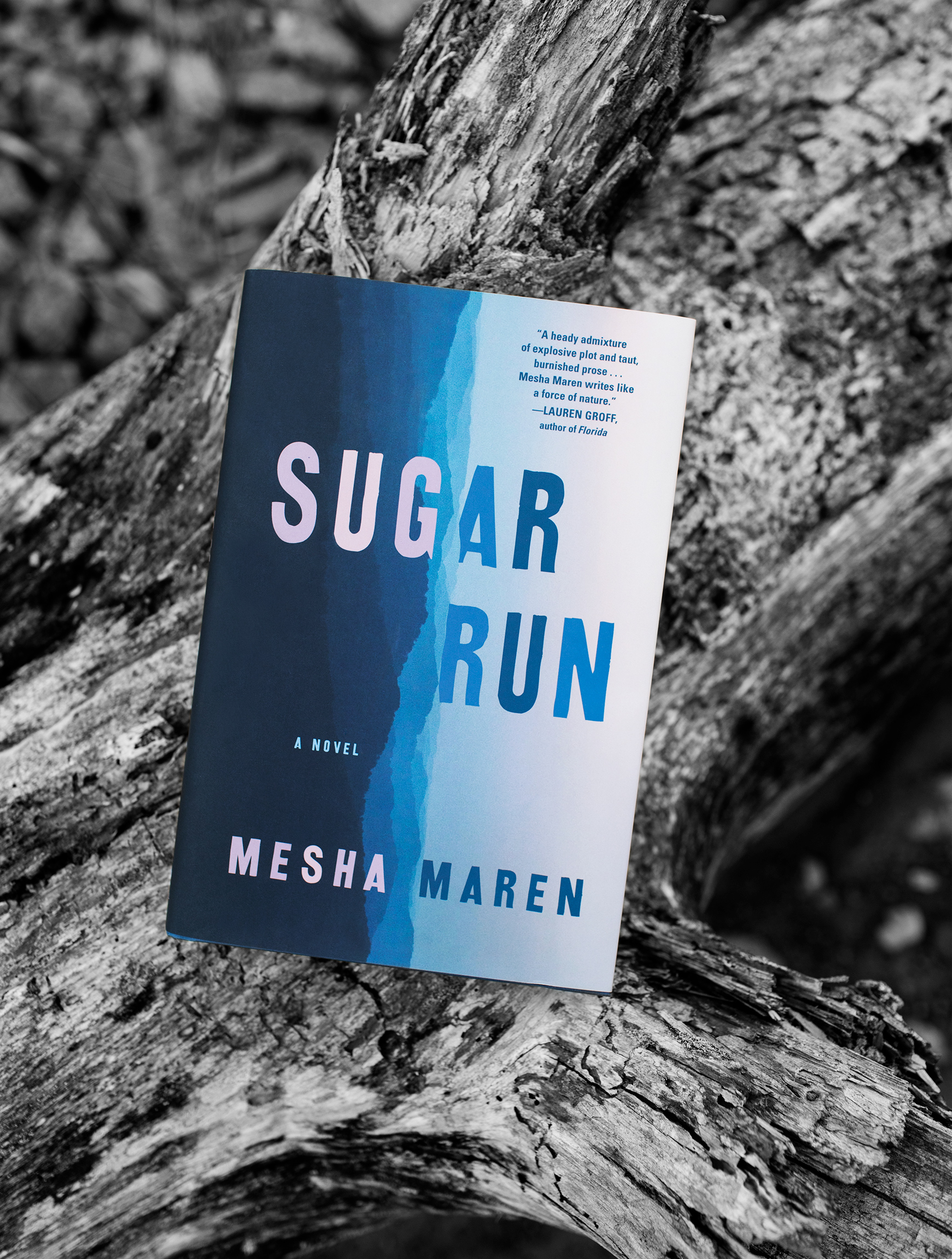 "Mesha Maren's""Sugar Run"" for the lily - We felt an easy connection photographing author Mesha Maren back in February. Her debut novel ""Sugar Run"" was featured in The Lily (a women-focused offshoot publication of The Washington Post). The Lily asked us to capture a series of portraits of her in Carrboro, NC as well as an image of her new book in a natural setting. The final images, presented in black & white, accompanied her feature interview and were published on The Lily's social media channels. Maren's novel dissects a character rebuilding her life after prison, who finds a second chance by returning to her Appalachian roots. Read the full interview here."