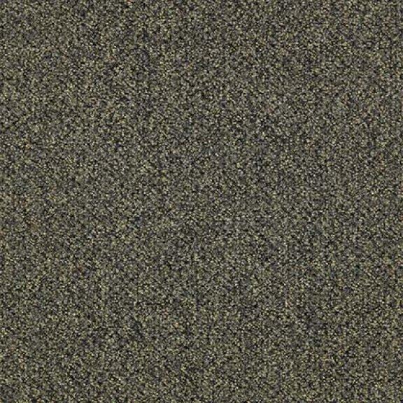 Tan Tetons 8404