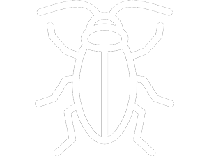 cockroach-minimal.png