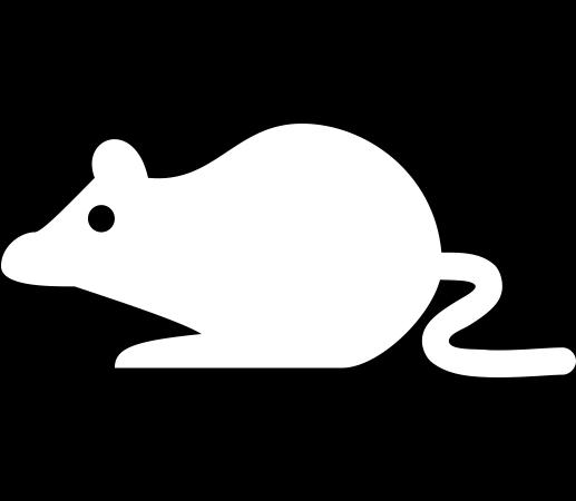 rat-minimal.png