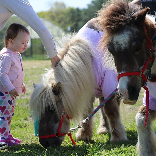 My little pony.... @li_sportspark #mrvsummercamps #Riverhead #RockyPoint #WadingRiver #Quoque #Westhampton #Mattitick #Longwood #Eastport #Shoram #Brookhaven #CenterMoriches #hamptonbays #Southhampton #hamptons #longisland #arts #STEAM #summercamp #paintball #sports #summercamp #thehamptons #montauk #fireisland #brooklyn #queens #newyork #kids #fitfam #summercamp @newsday @spiritspromise @news12li #love #kids