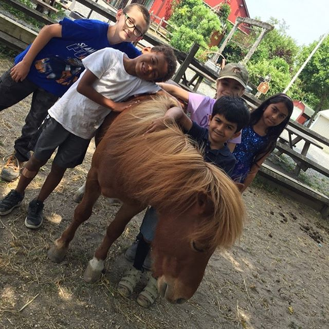 Got Camp? It's not too late to register for Horse & Pony Camp this week!